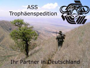 TEST-300x225 %ASS Trophäenspedition